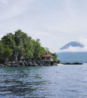 pulau babua